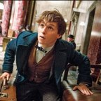 Fantastic Beasts And Where To Find Them: The magic is back