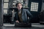Fantastic Beasts: The Crimes of Grindlewald: A magical interlude
